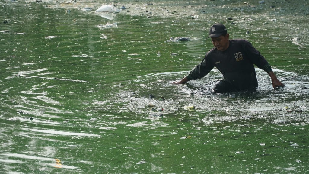 Pencemaran air Situ Rawa Bebek