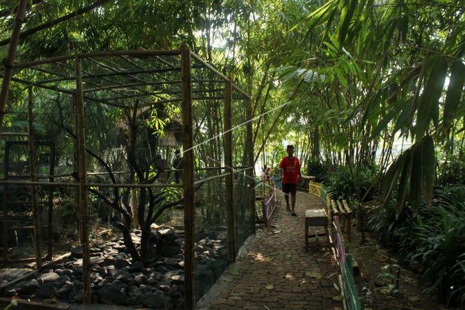 Hutan Bambu: Arena Piknik Baru Warga Bekasi