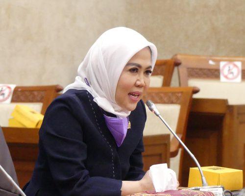 Intan Fauzi Anggota DPR RI Komisi VI