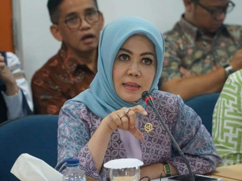 Anggota Panitia Kerja (Panja) Rancangan Undang-Undang Sumber Daya Air (RUU SDA)  Hj Intan Fauzi, SH, LL.M